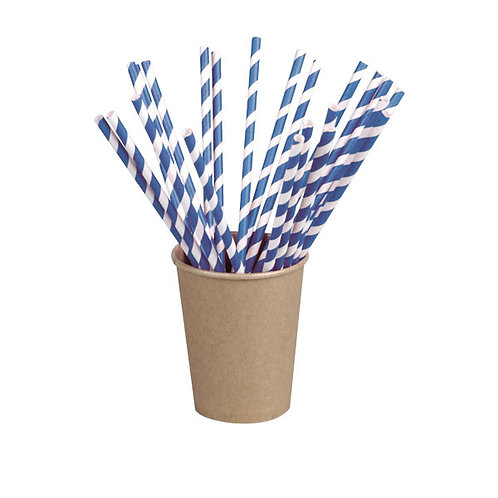Blue Striped Paper Straws Coated with Bee's Wax (Wrapped)