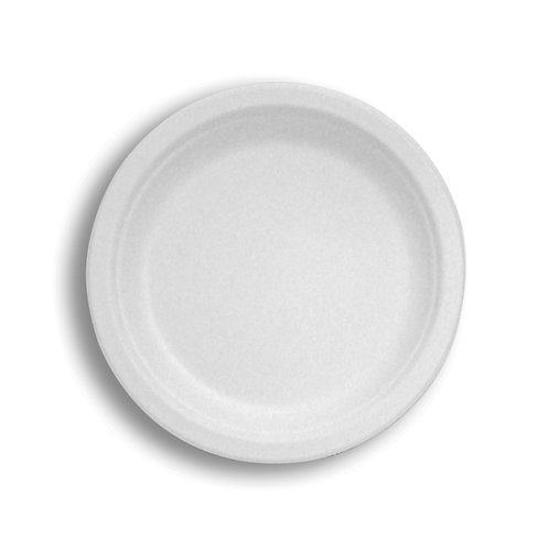"Sugarcane Fiber 10"" Plate  Tableware"