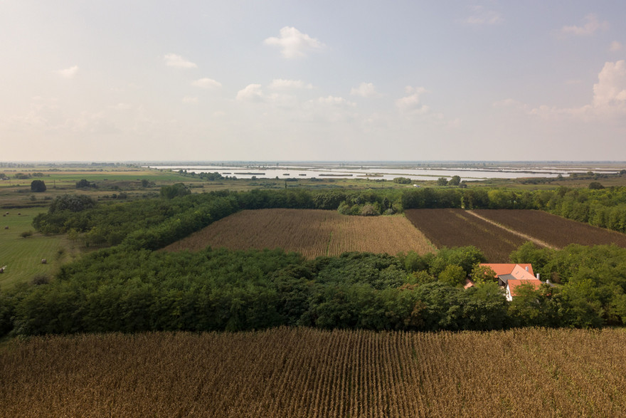 Tanya-dron-2.jpg