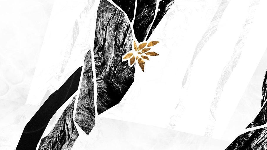 Nature_Plant_v04.jpg