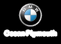 BMW PLYwhite.png
