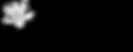 Music_City_Magnolia_Web_Logo.png