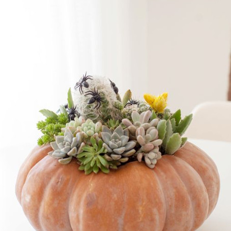 5 Creative (diy) Halloween decorations