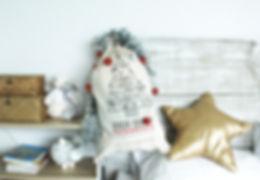 Santa Sack LS.jpg