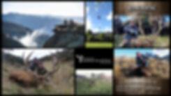 alpine hunting.jpg