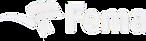 Logo%20Fema_edited.png