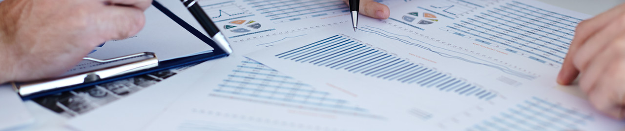 Analysing the Data