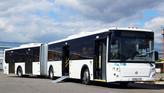 В Павловске появится новый автобусный маршрут