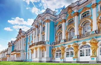 Яндекс: в Пушкинском районе самый чистый воздух