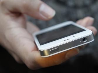 В Павловске раскрыли кражу мобильника