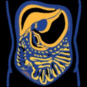 intestino-01.png
