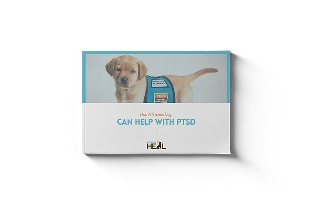 ptsd-service-dog-guide-cover.png
