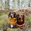 Thumbnail: Burgundy Crochet Snood