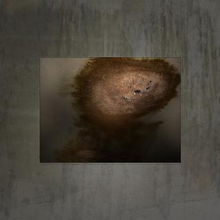ms lola's plaster ceiling