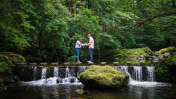 Wedding Photography Tollymore