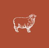 Merry Trading Final Logo_Sheep Brown.png