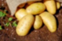 patate proprietà benefiche