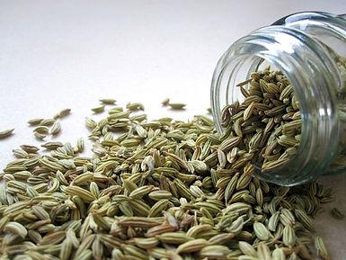 semi di finocchio proprietà benefiche