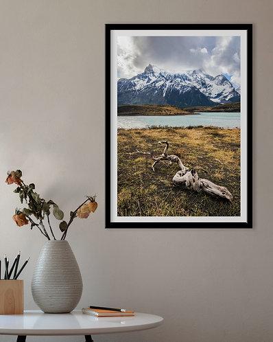 Lembranças do Fogo - Paine Grande