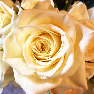 For the love of yellow roses 💛 #wedding
