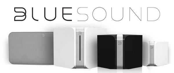 BlueSound-ecosystem.jpg