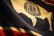 Wyoming Flag.jpg