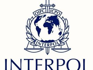 L'Interpol chiude migliaia di siti malevoli