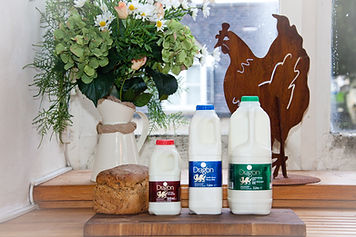 "Cotteswold Dairy starts producing Welsh milk ""Dragon"" 2012"