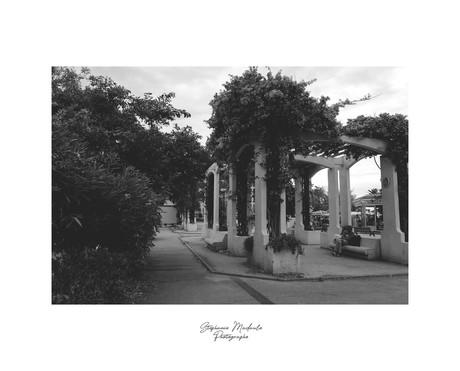 Stéphanie-Madaule-Photographe-Ajaccio-CO