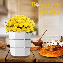 Icepac Blanc   14,90€