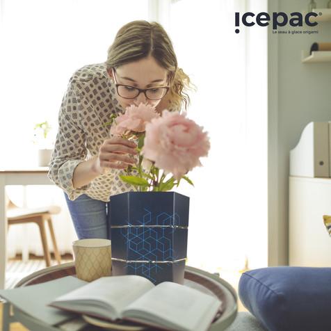 Icepac Molecule