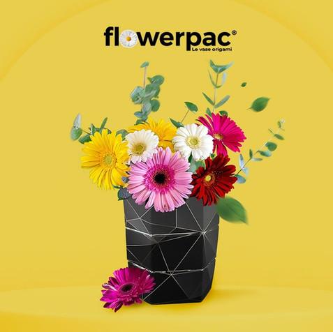Icepac, le vase origami