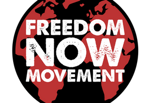 Freedom Now Book: An analysis of human trafficking and the solution from a Christian perspective