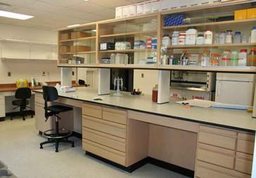 Altizer Phase II Lab