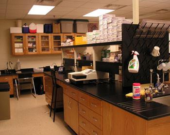 Altizer Phase I Lab