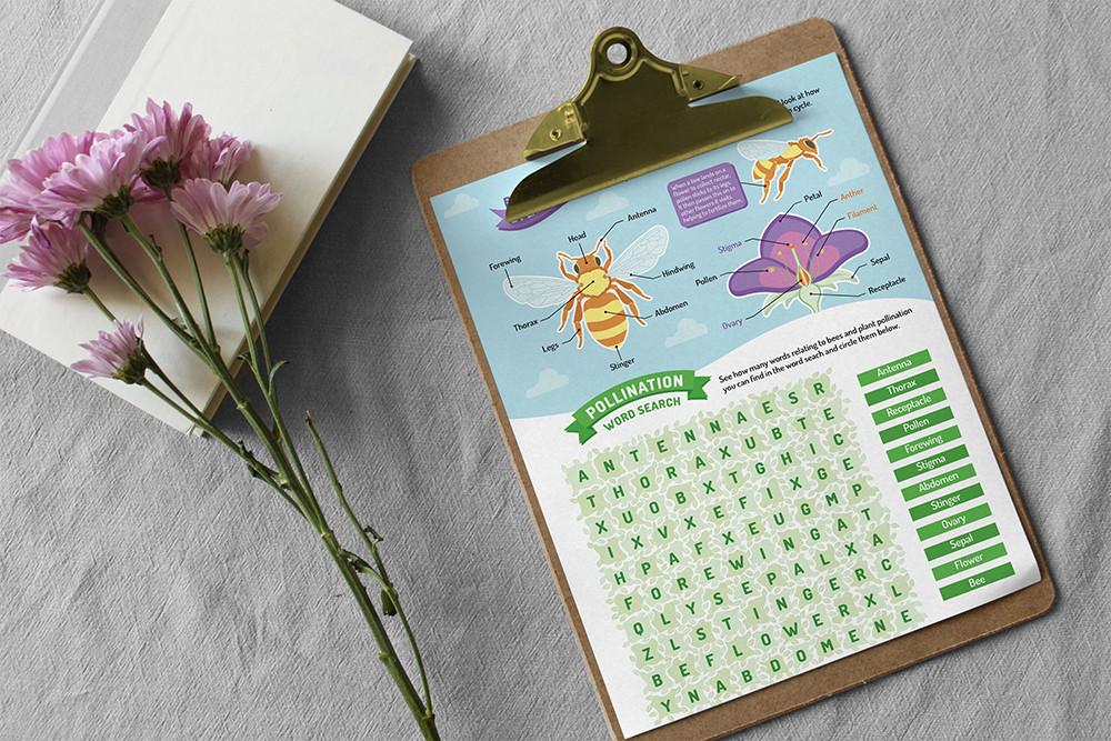 An activity worksheet for children designed by Wild Apple Design