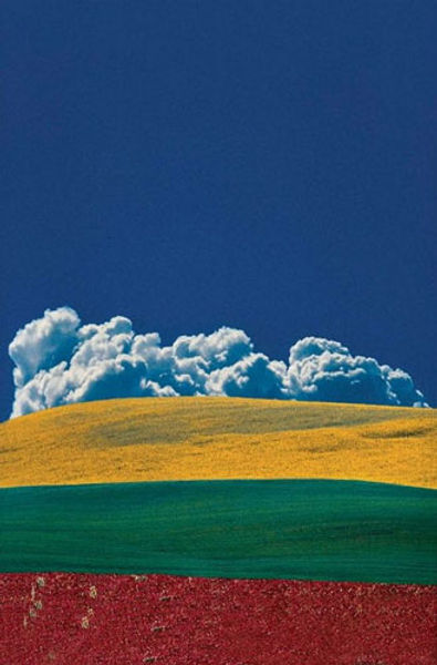 Foto de un campo en tres colores simbolizando las tres edades de la vida.