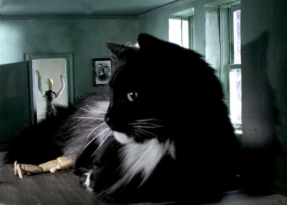 Fotografía de un gato gigante en una habitación con dos figuras humanas que son muñecos