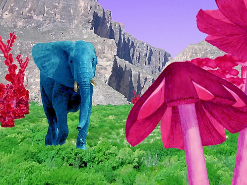 Hellephant in Wonderland