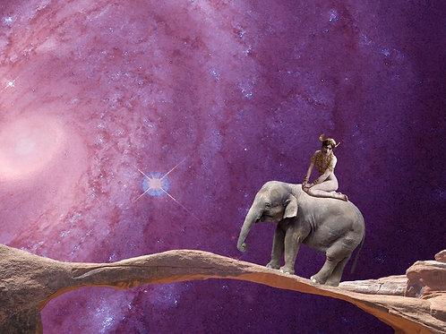 Mata Hari, the Elephant, and the Bridge to Anywhere