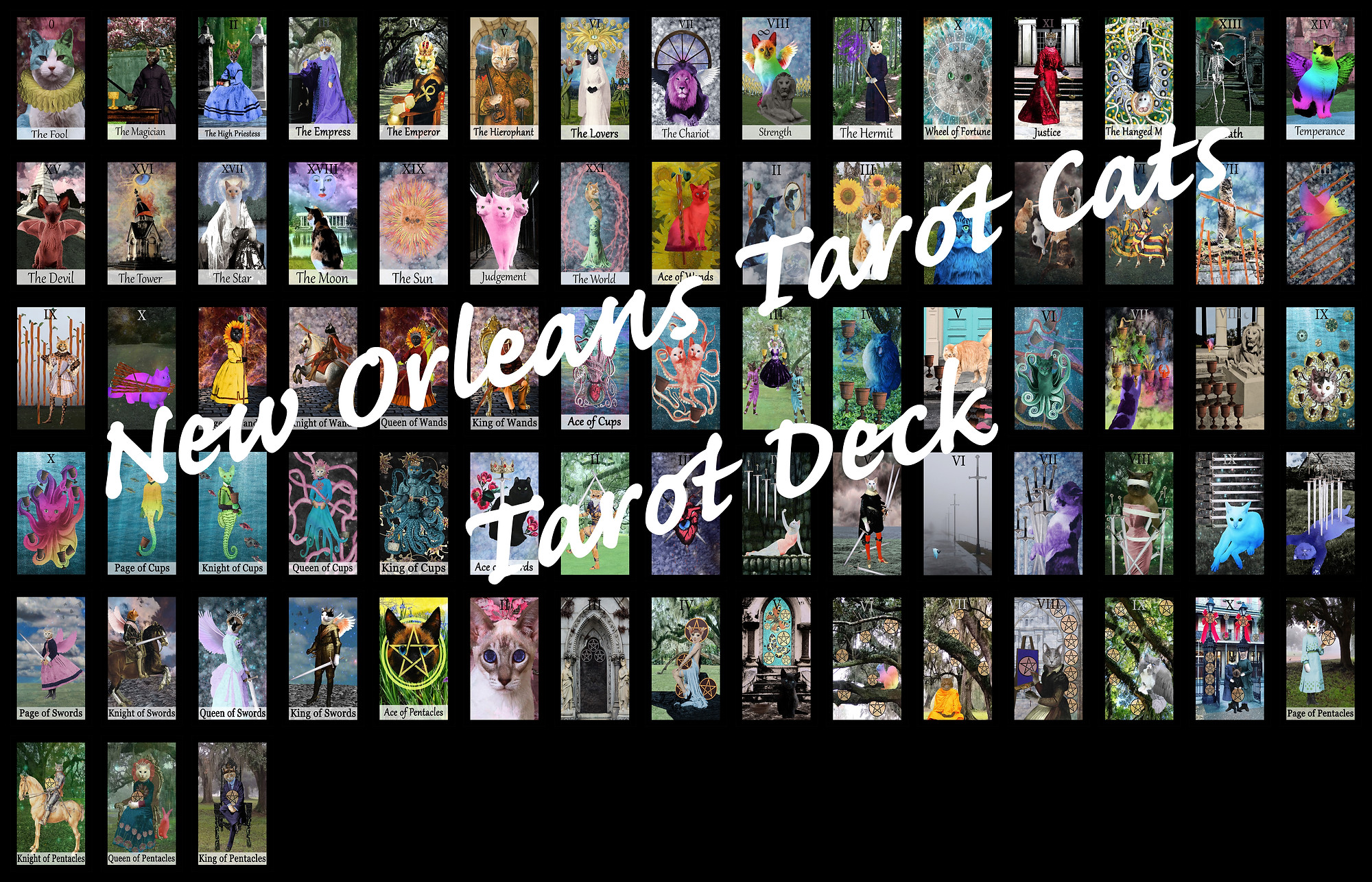 new orleans tarot cats.jpg