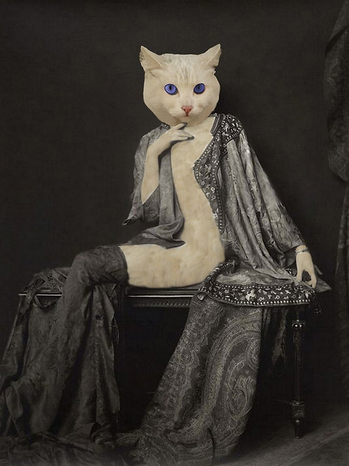 Ziegfeld Follies White Cat as photograph art