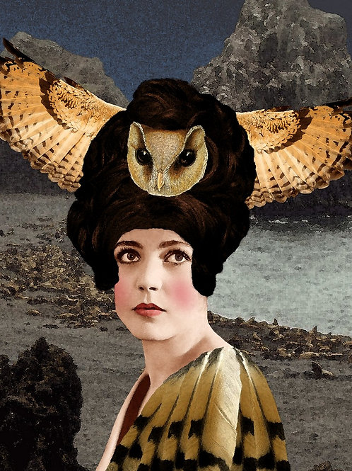 The Owl Couture of the Fashionable Flapper