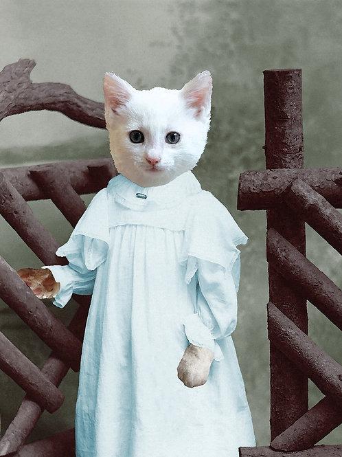 Custom Christening Kitten in White Fur