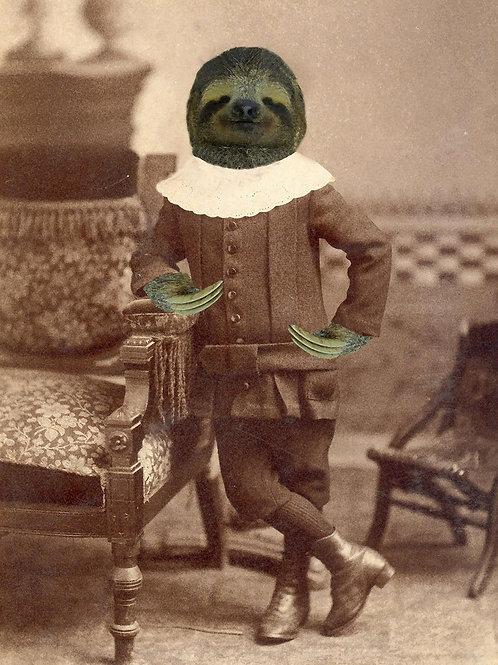 Sloth Boy as best art photograph ever
