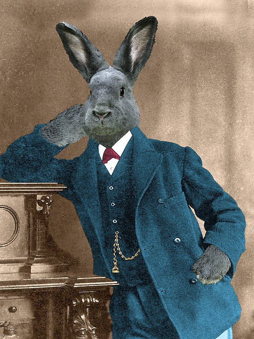 Best Hare on this Gray Rabbit in Art Photograph