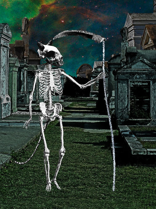Grim Reaper Cat Skeleton as Death Tarot Card