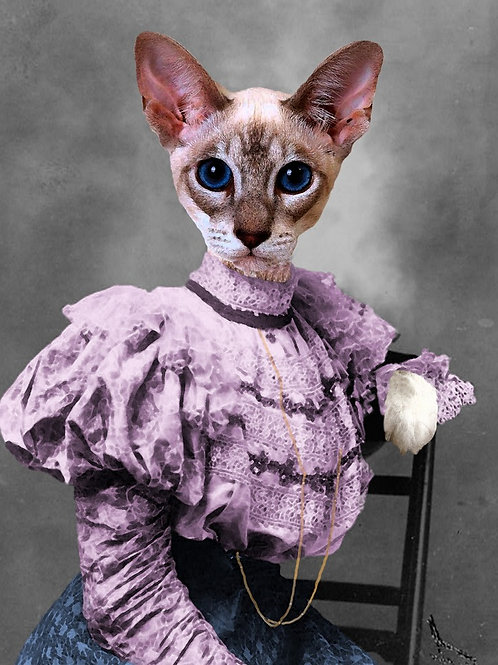Siamese Cat in Victorian Evening Gown photograph