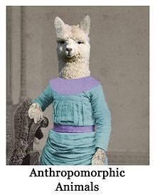 anthro misc.jpg