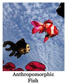 anthro fish.jpg